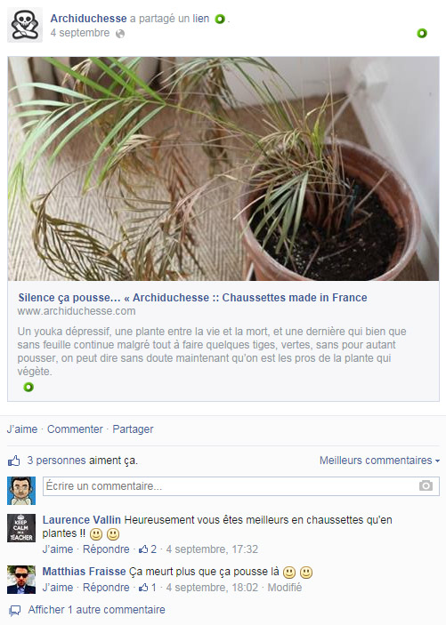 Post Facebook Archiduchesse