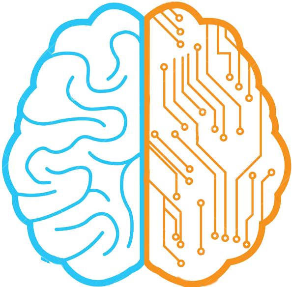 dessin d'un cerveau vu de dessus avec la partie gauche humaine et la partie droite digitale